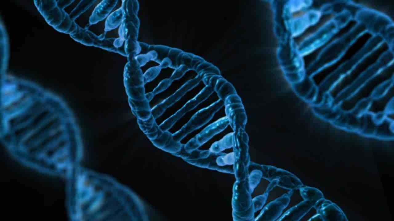 What is Drug- Gene Test?
